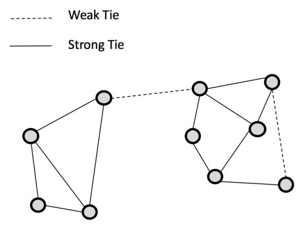 Figure 1: A Social network with strong and weak ties
